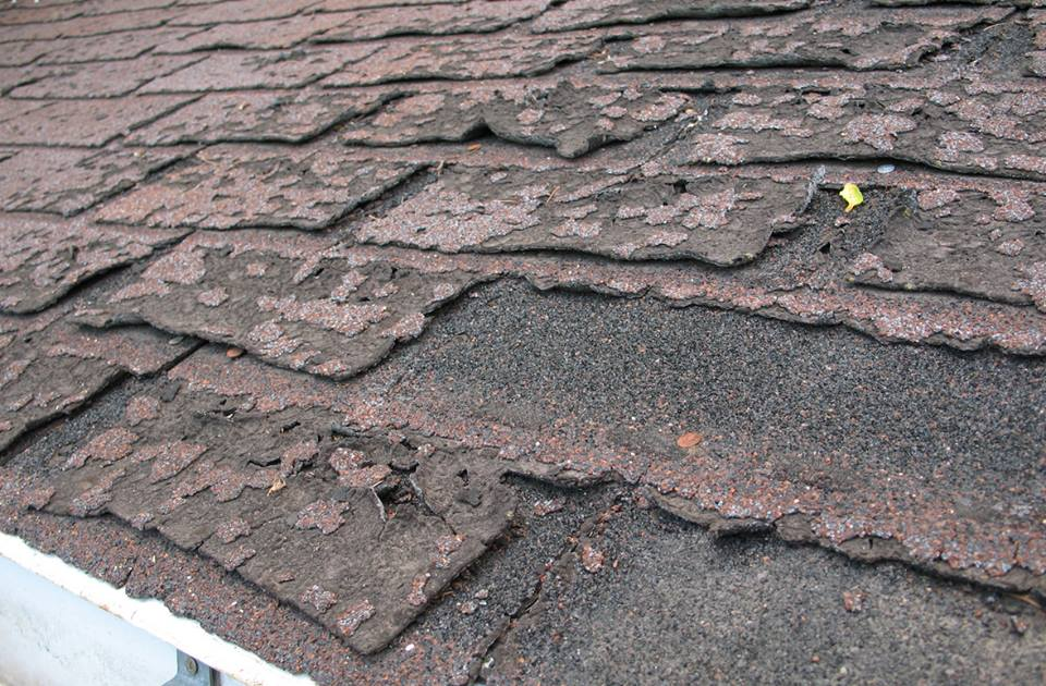 organic shingle that is not repairable