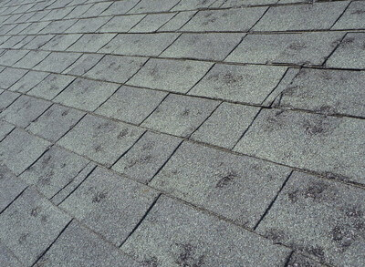 schedule a free roof and siding hail inspection today